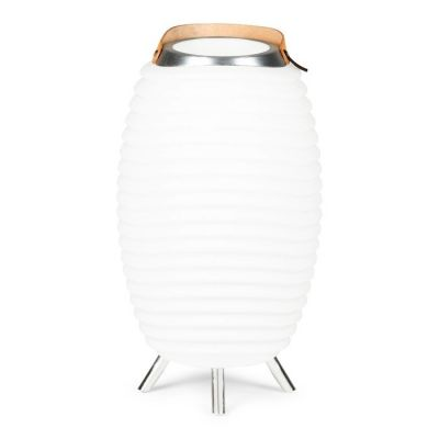 Lampe LED multifonction avec haut-parleur bluetooth Synergy 65 | Kooduu